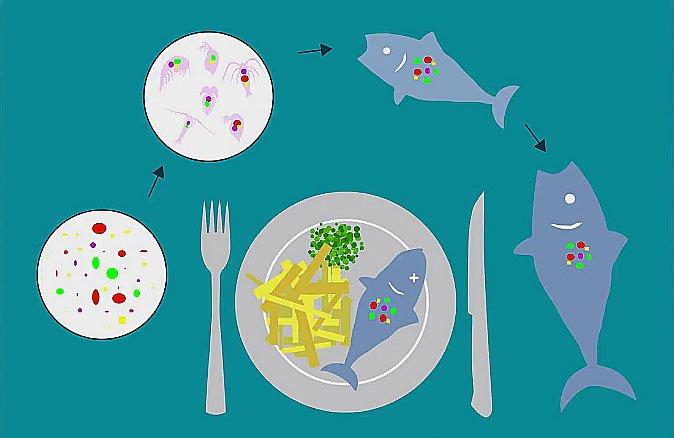 ilustração de poluição por microplástico e contaminação humana