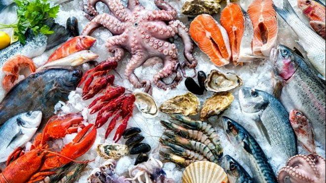 imagem de frutos do mar