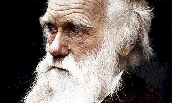 imagem de charles darwin