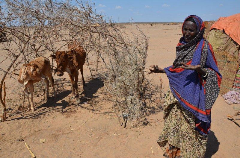 imagem de mulher no deserto