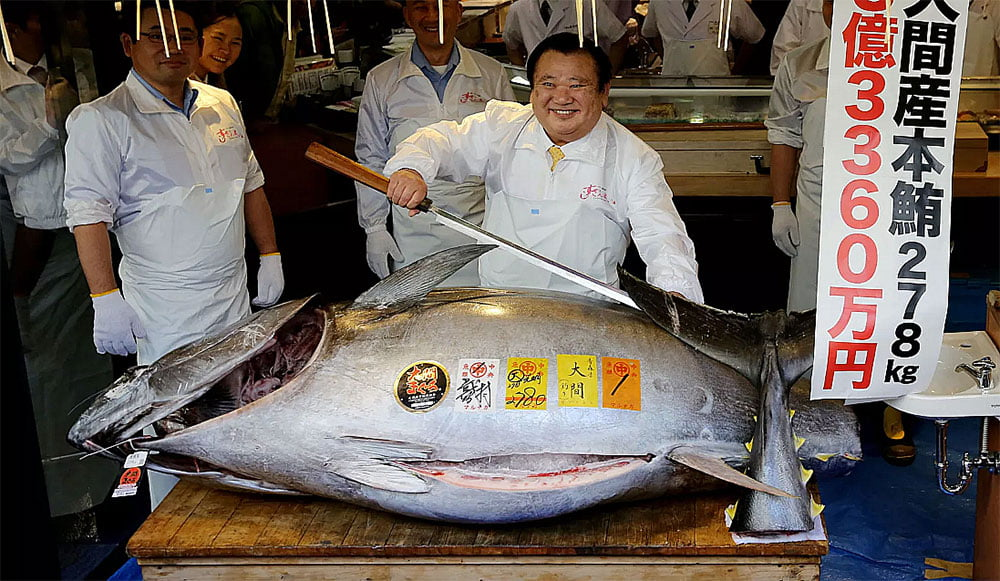 imagem de atum azul, ameaçado de extinção, vendido em Tokio