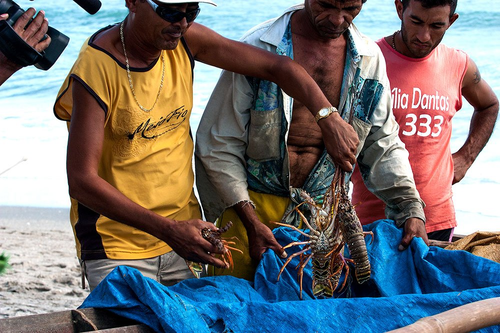 imagem de pescadores artesanais de lagosta