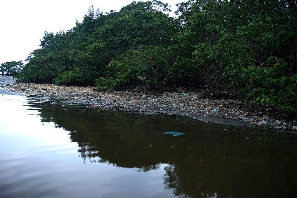 imagem de lixo no mangue da baía de Guanabara