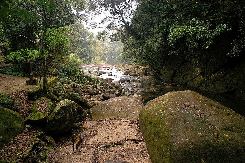 imagem das Corredeiras do rio Macacu.