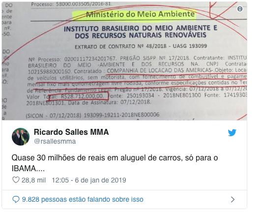 imagem de twitter de Ricardo Salles sobre Suely Araújo, do Ibama