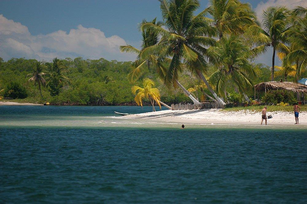 imagem de Detalhe da baía de Camamu.