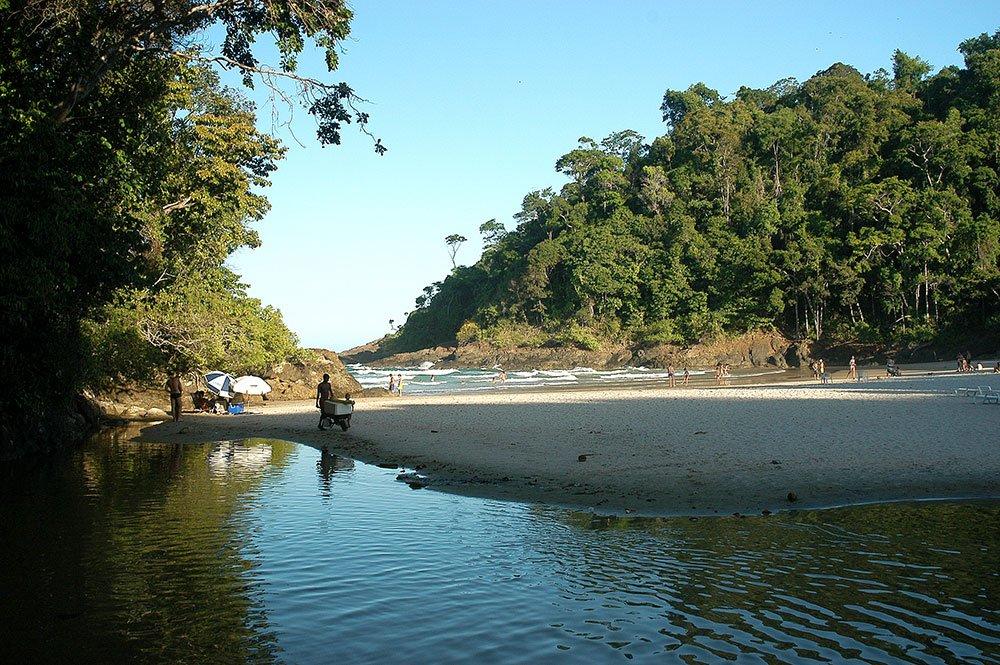 imagem de Praia de Itacaré cercada por Mata Atlântica.