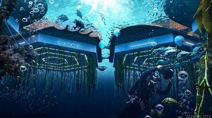 imagem de cultivos de vida marinha sob casas flutuantes
