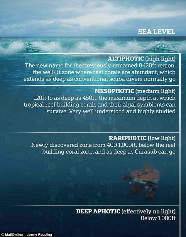 ilustração das profundidades oceânicas e suas definições