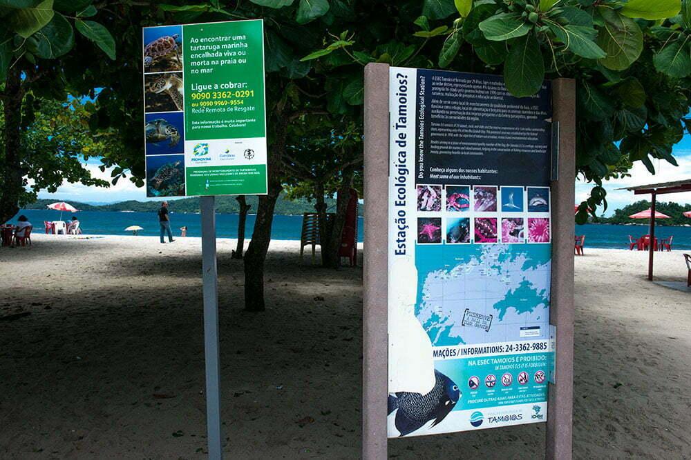 imagem de praia e desova de tartarugas na esec de tamoios