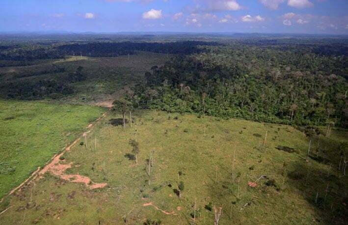 Imagem de desmatamento na Amazônia, na era Bolsonaro