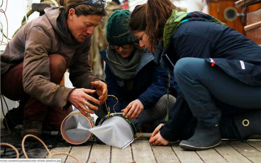 imagem de pesquisadores Examinando detritos na agua do mar,