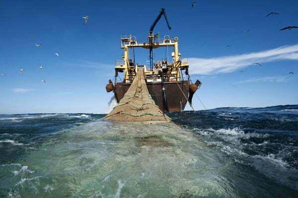 imagem demarco da Frota pesqueira mundial