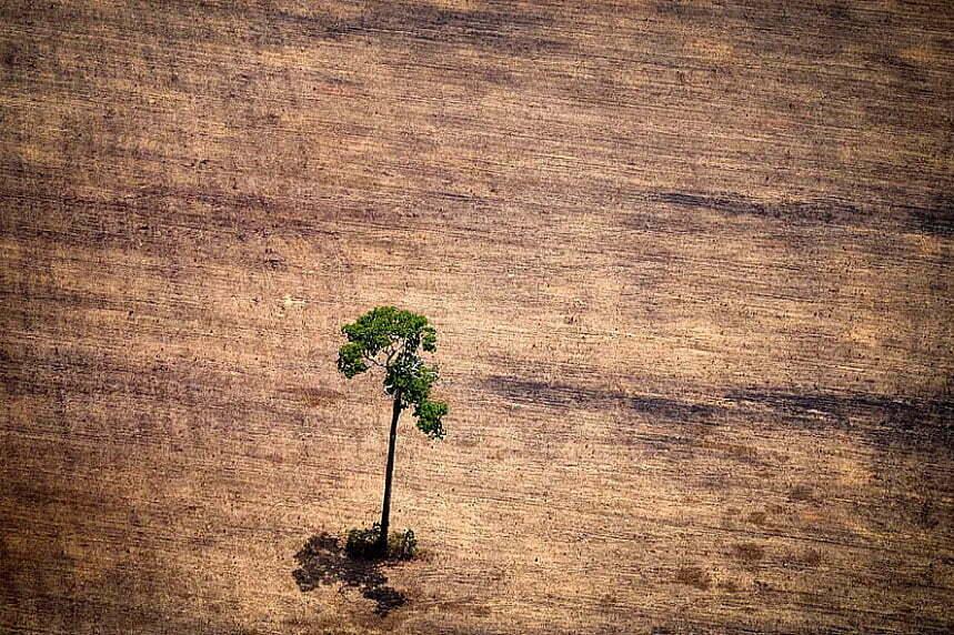 imagem de desflorestamento Amazônia, na era Bolsonaro
