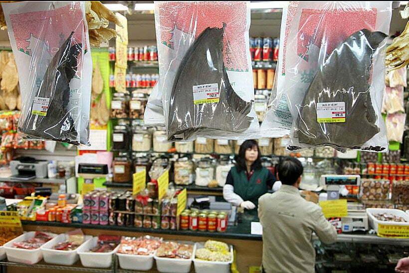 imagemde barbatanas de tubarão a venda em mercados