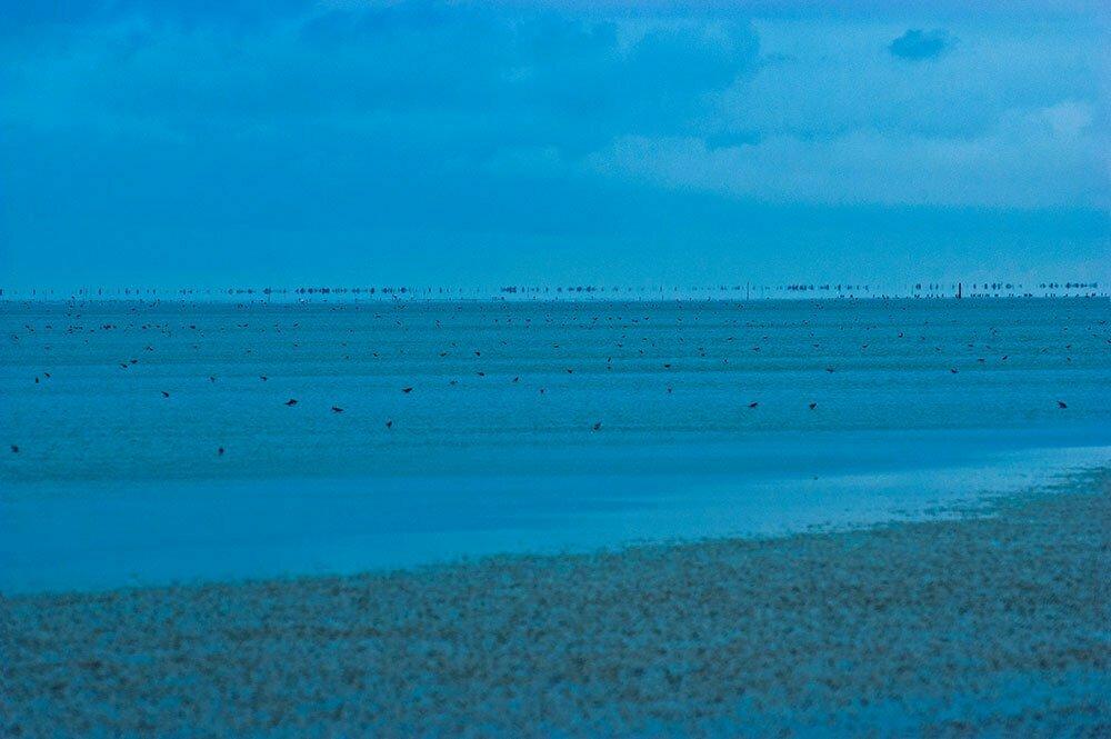 imagem da lagoa do peixe, um dos Parques nacionais brasileiros
