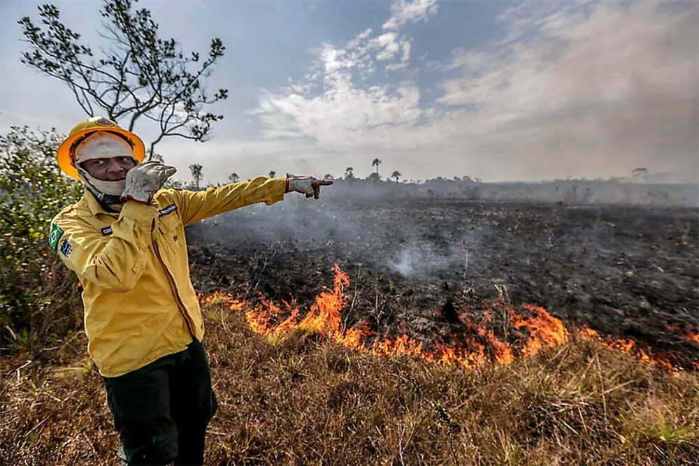 imagem de amazônia e queimadas