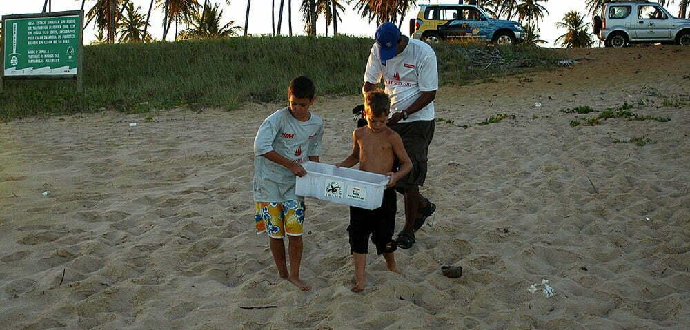 imagem de soltura de tartarugas na praia do Forte.