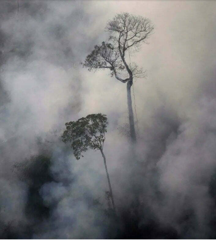 imagem da Amazônia e queimadas