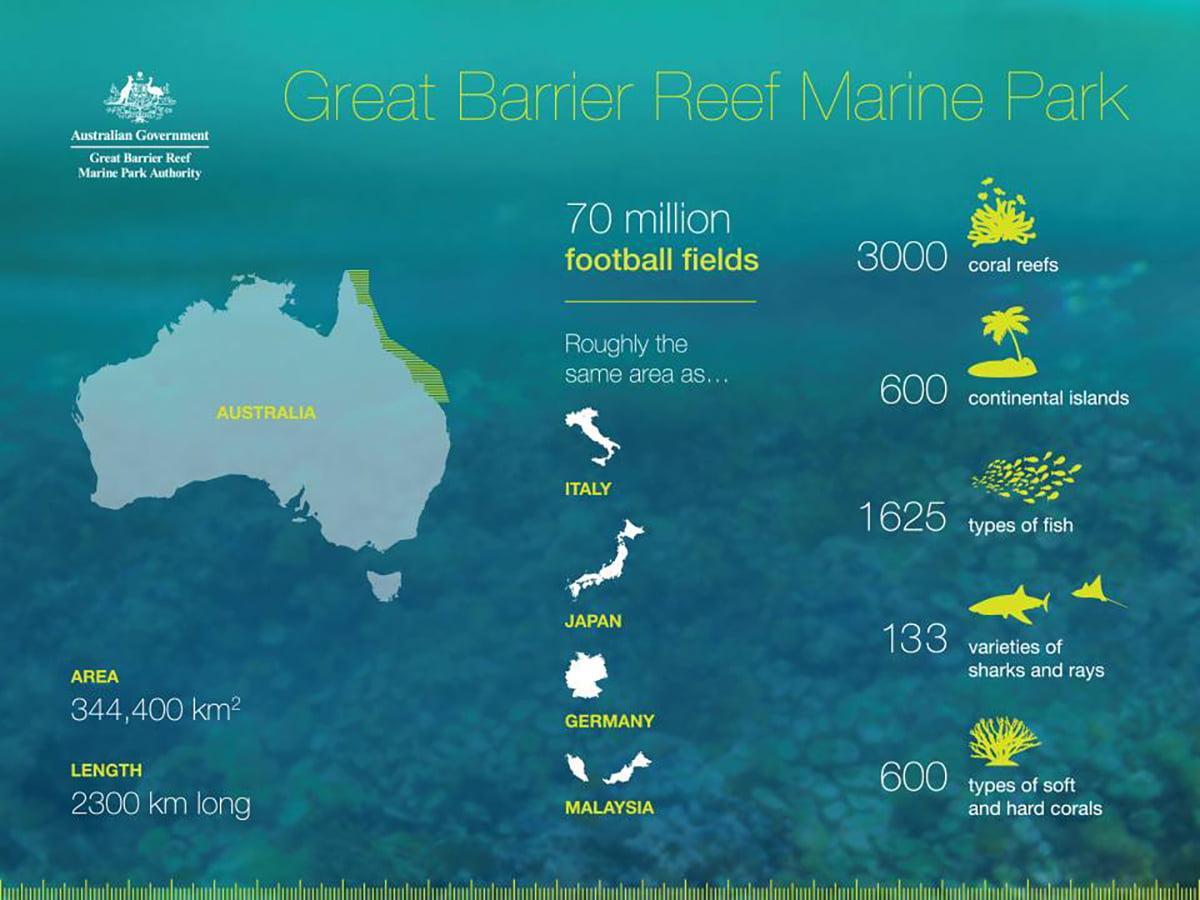 infográfico sobre a Grande Barreira de Corais e a vida marinha