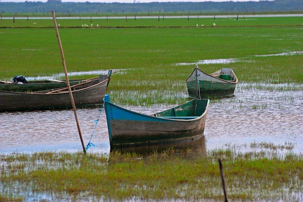 canoas de pescadores artesanais