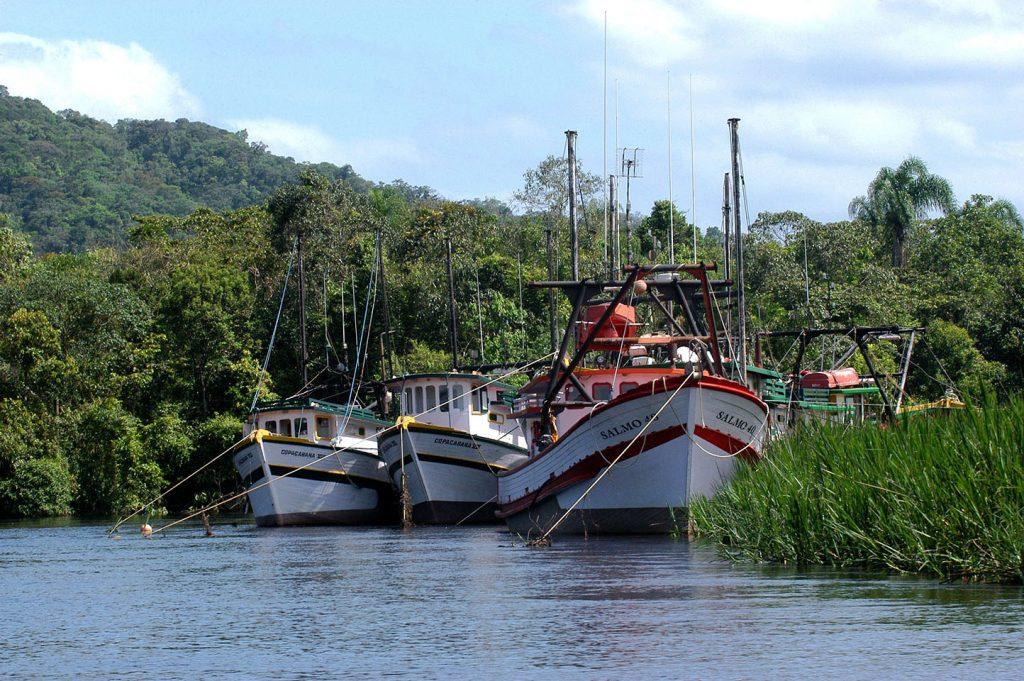 imagem de barcos de pesca fundeados em rio