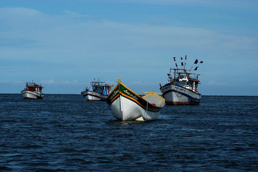 imagem de barcos de pesca na baía de Guaratuba