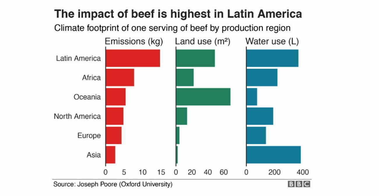 infográfico sobre impactos da carne