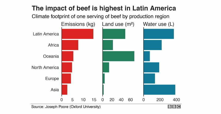 infográfico sobre a produção de carne no mundo e impactos ambientais