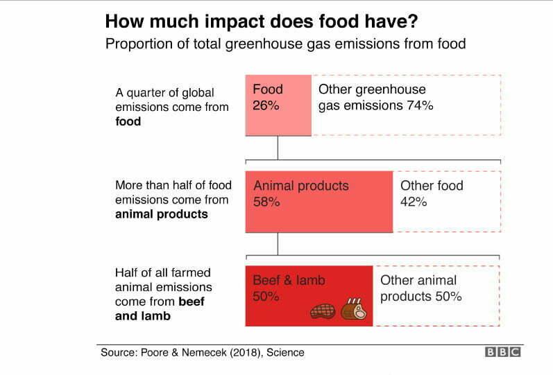 infográfico sobre produção de alimentos e impactos no aquecimento global