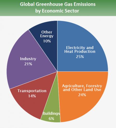 infográfico das emissões mundial por setor da economia
