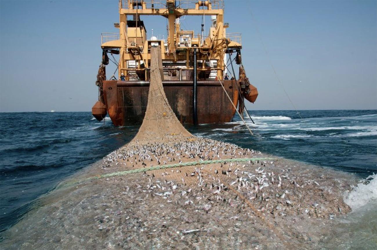 imagem de super trawller passando rede de pesca