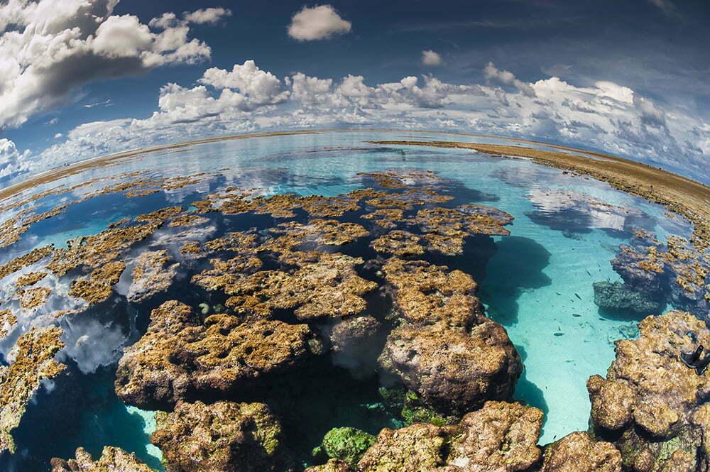 imagem de recifes de corais do atol das rocas