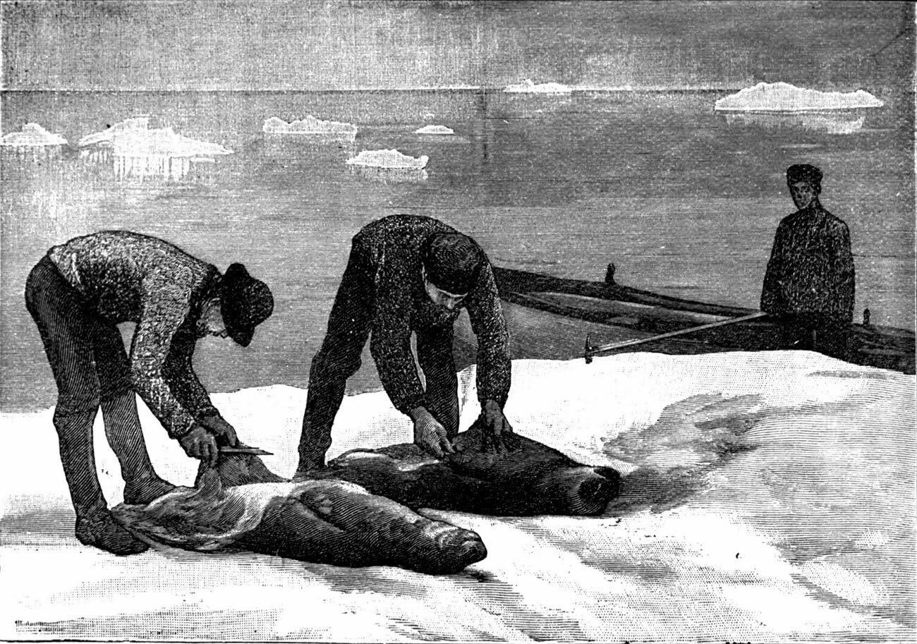 ilustração de caçadores de focas na Antártica no século 19 na História da descoberta da Antártica