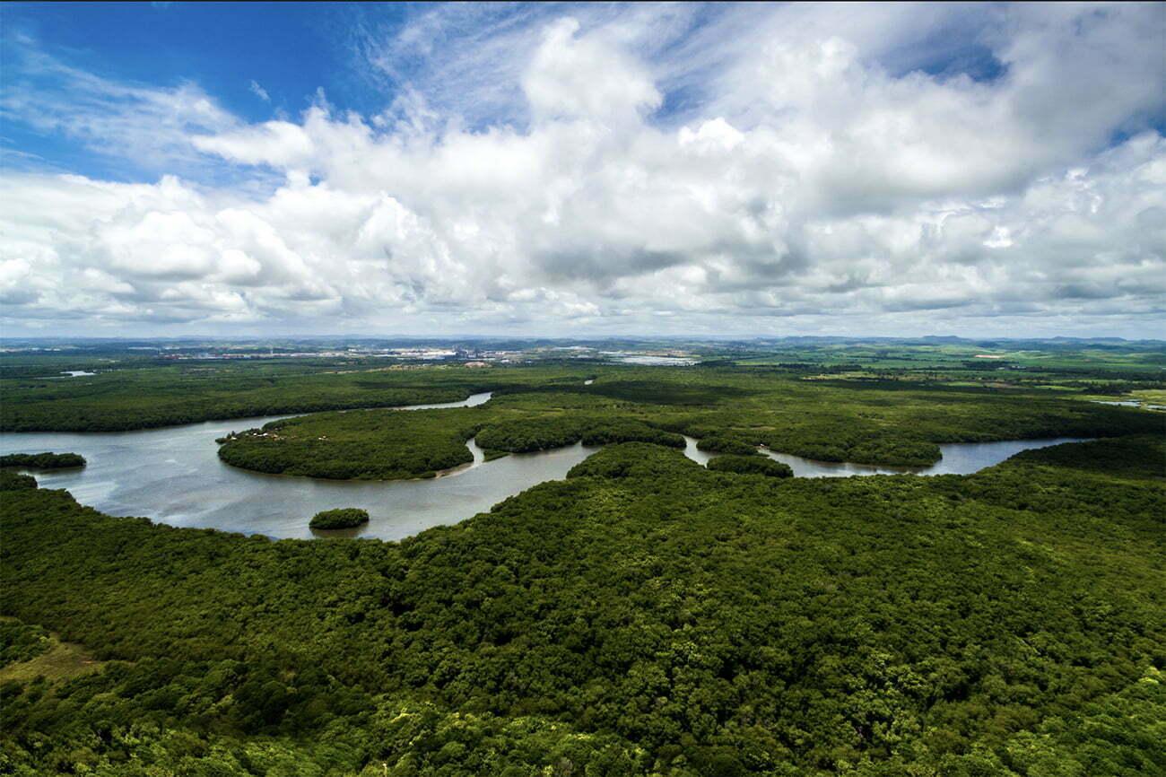imagem da Amazônia