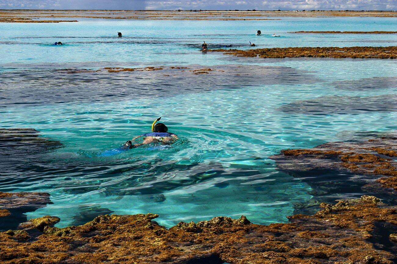 Turistas mergulham em recifes de corais do Atol das Rocas.