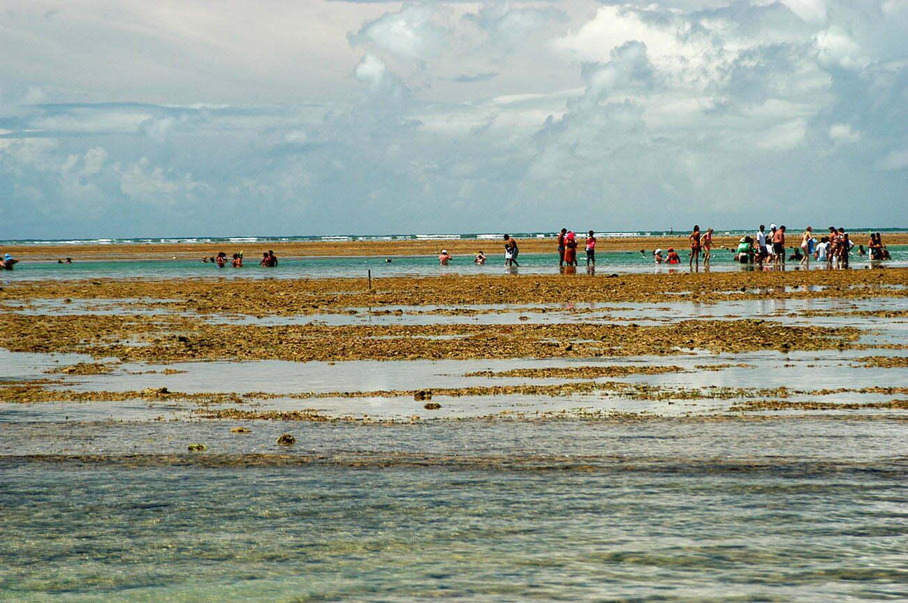 imagem de Turismo em recifes de corais