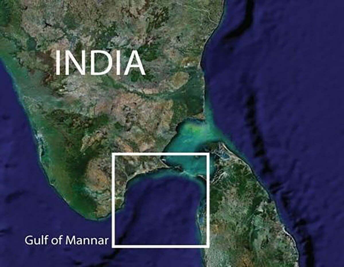 imagem do golfo de Mandar