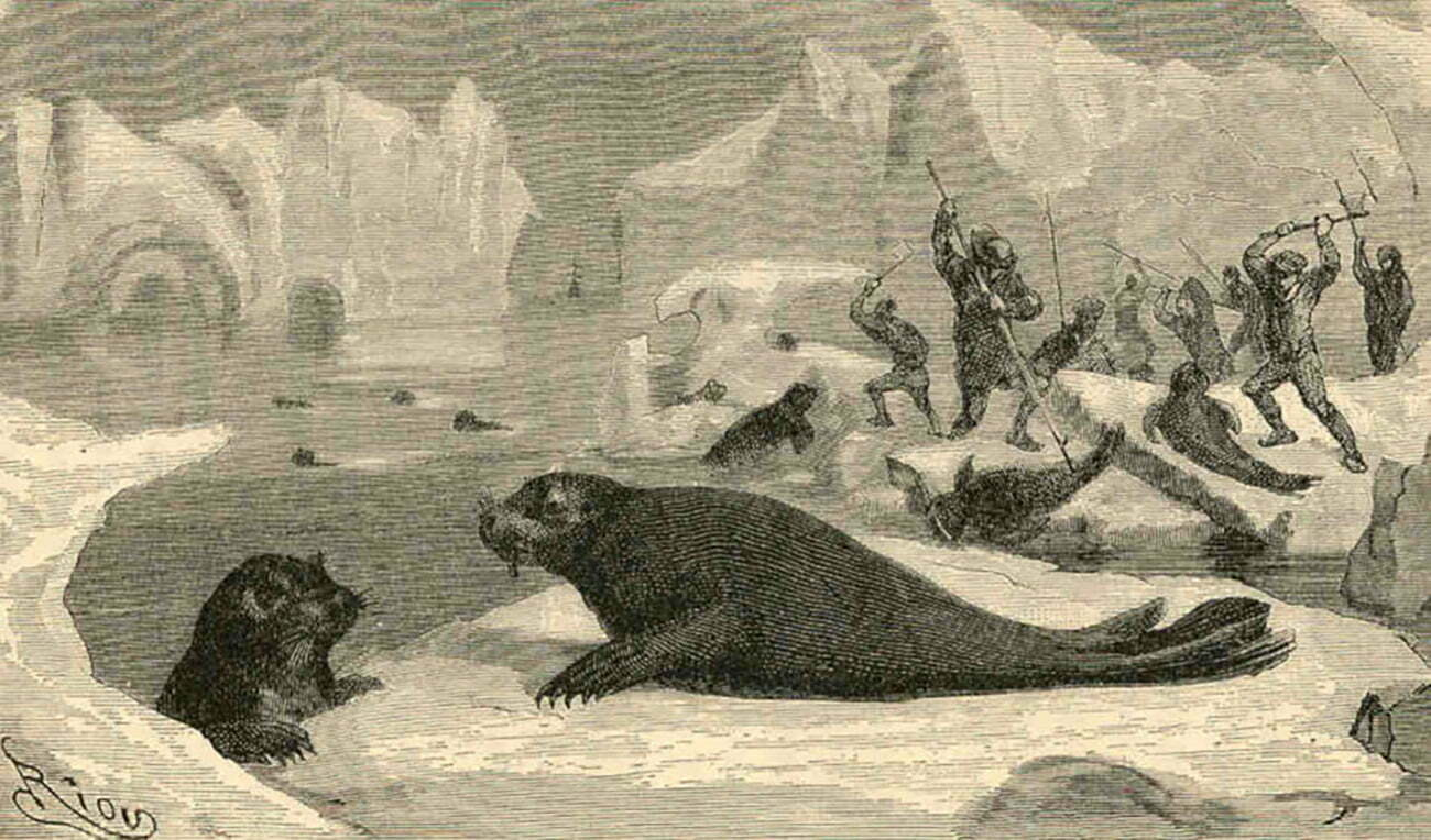 ilustração de caçadores de focas e elefantes-marinhos na Antártica no século 19 na História da descoberta da Antártica