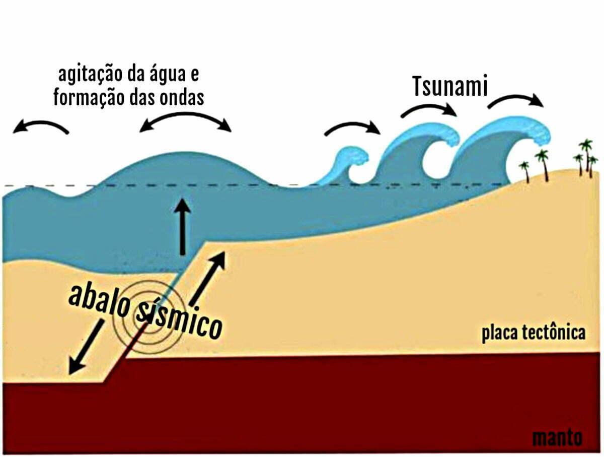 infográfico mostra formação de tsunamis