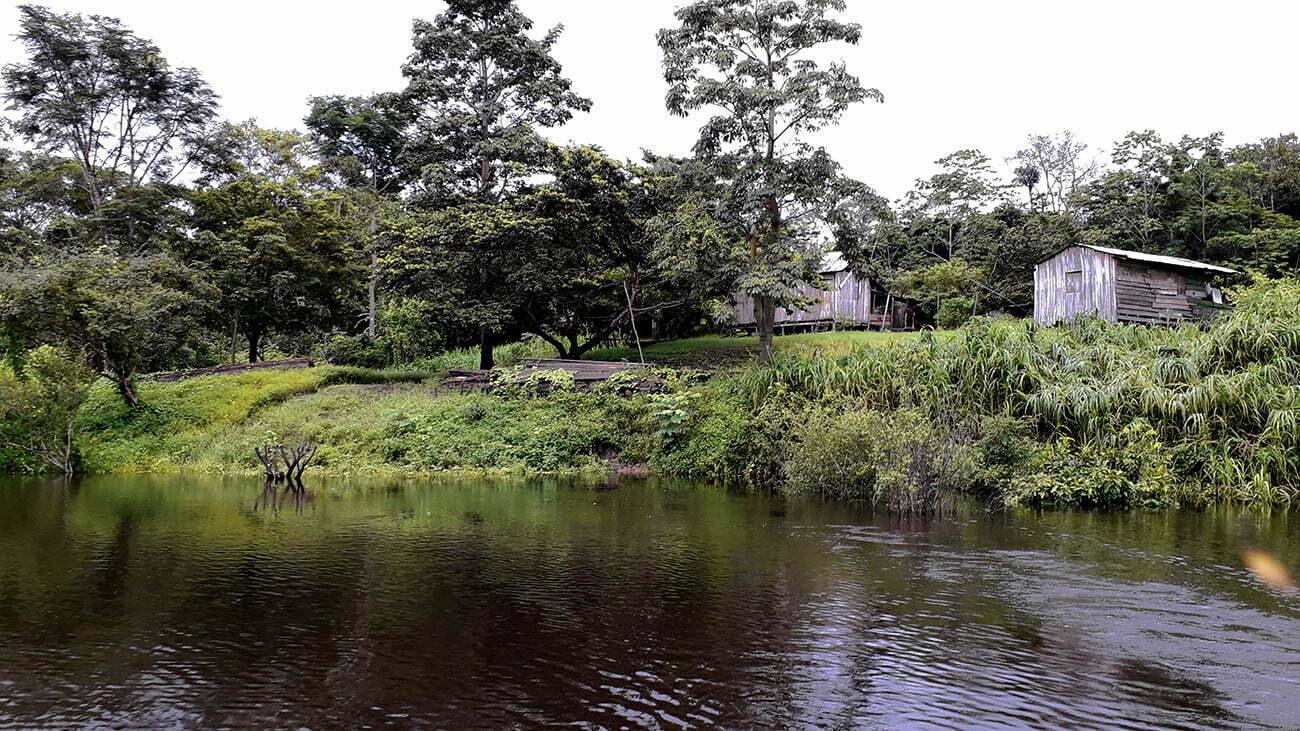 imagem de ilha artificial na amazônia