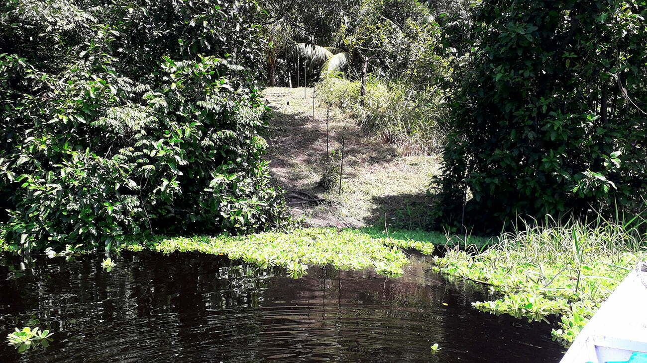imagem de ilhas artificiais na amazônia, conhecidas como aterrados
