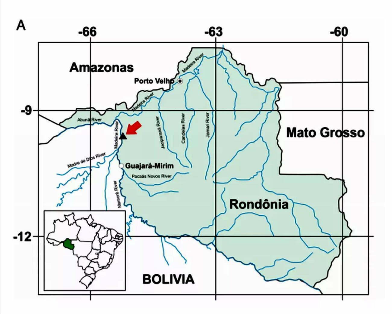 mapa da área onde forma encontrados nova espécie de peixe-boi