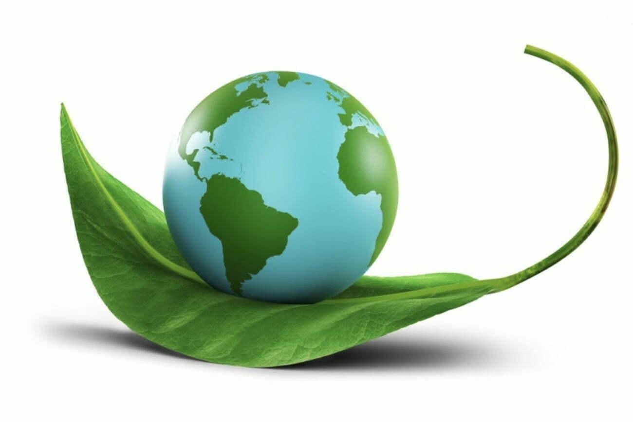 infográfico sobre meio ambiente