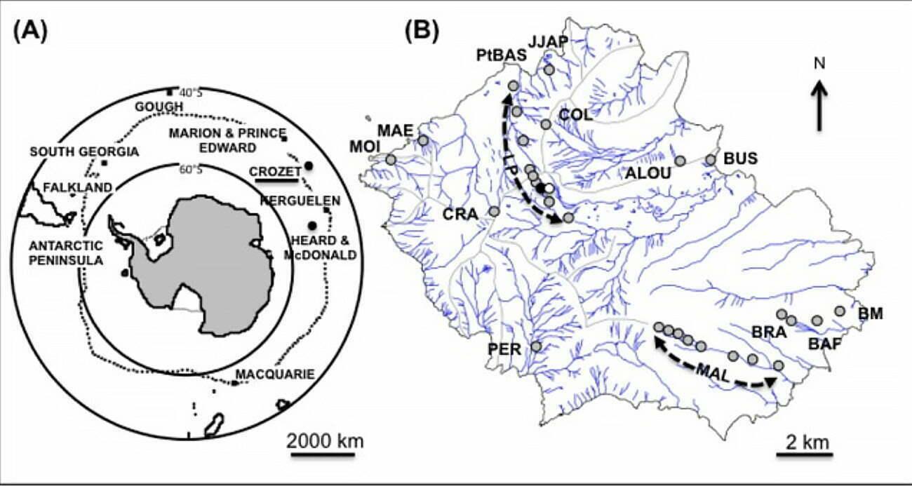 mapa do arquipéklago sub-antártico de Crozet