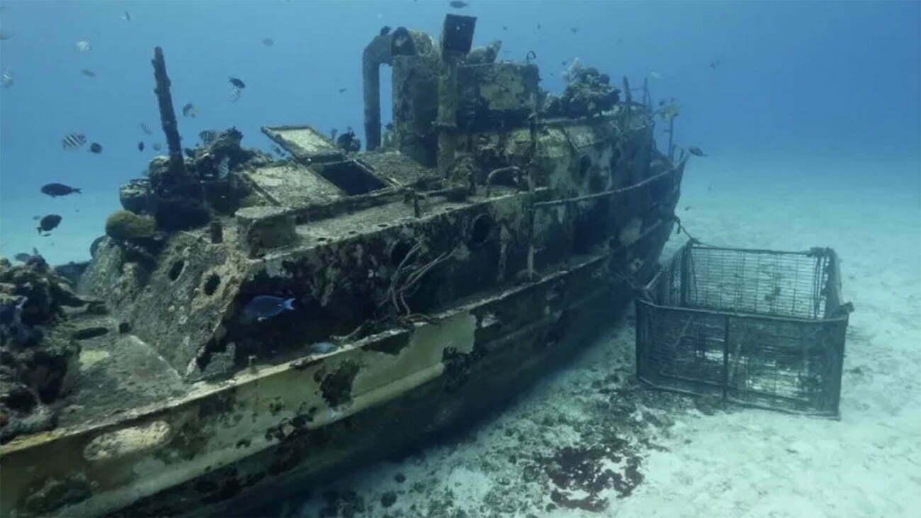 imagem de recife artificial em navio afundado
