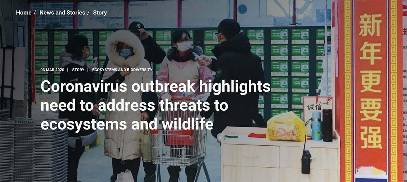 imagem de matéria da ONU sobre Degradação ambiental e novo vírus