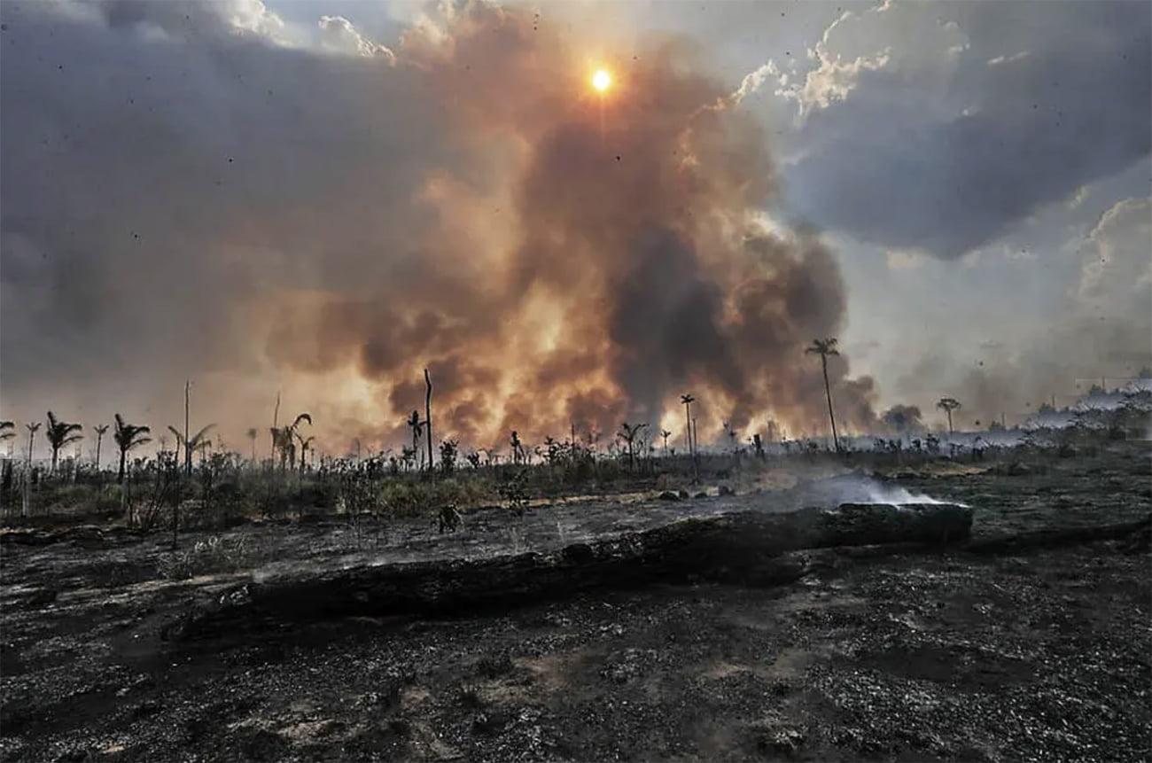 imagem de desmatamento na Amazônia 2020
