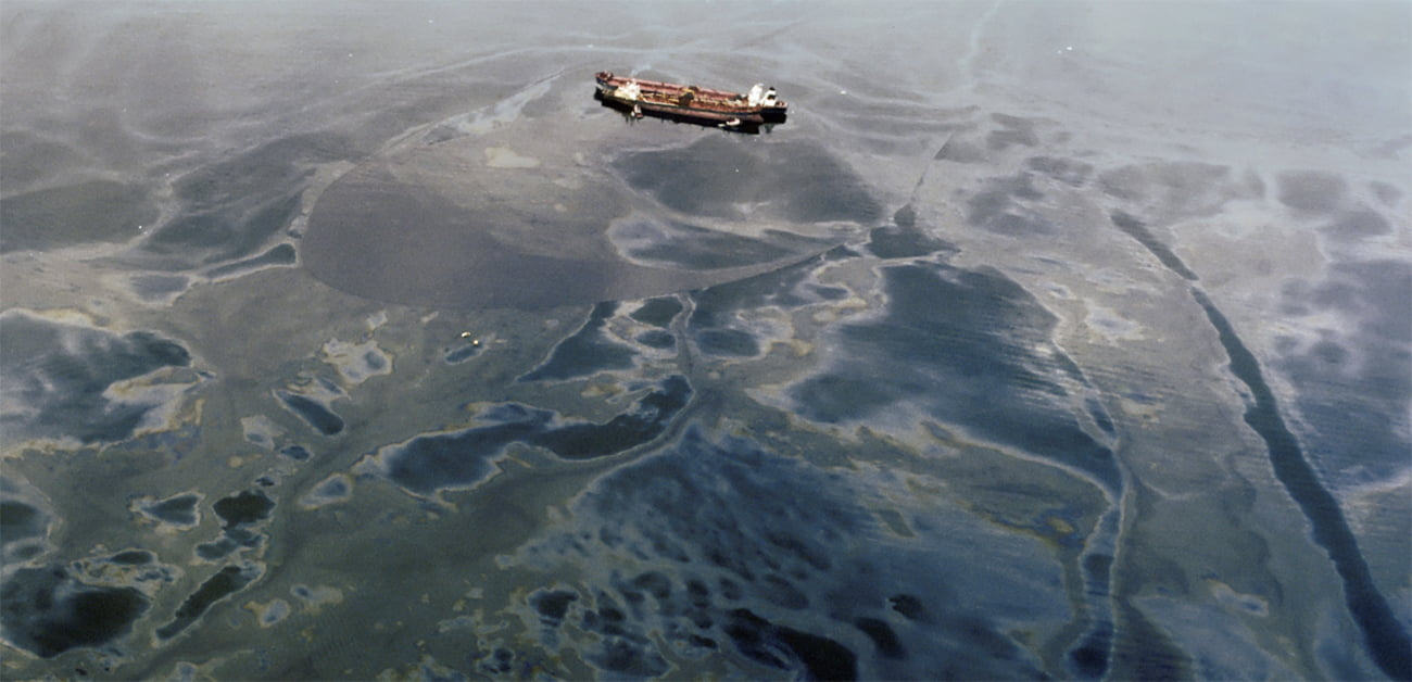 Effects of exxon oil spill on commercial fisheries