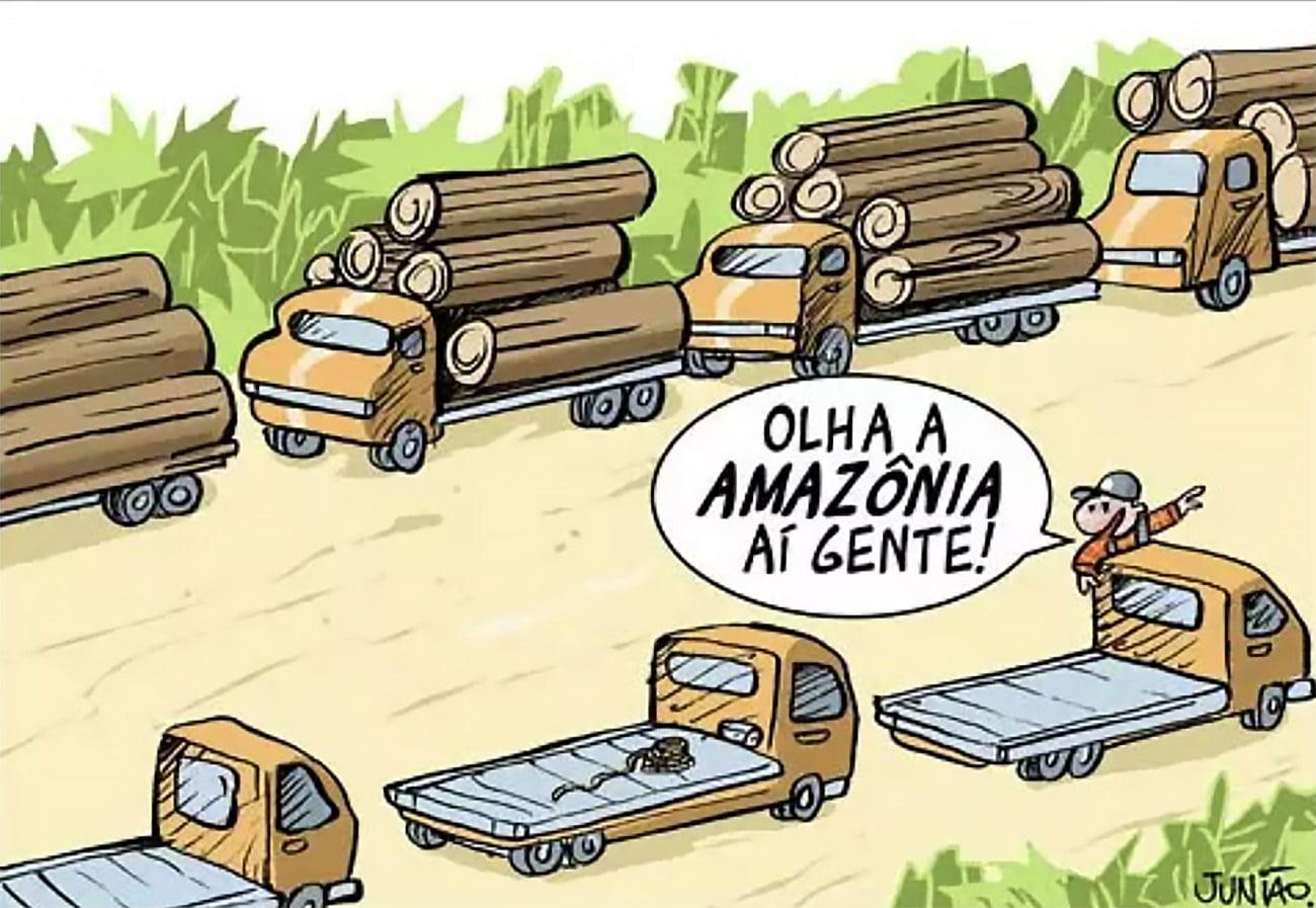 Ilustração alusiva ao desmatamento na Amazônia